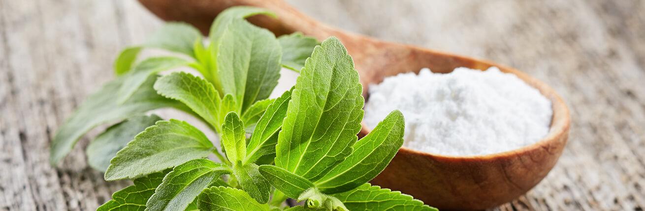 stevia kaufen lebensmittel ohne zucker ideal f r diabetiker low carb. Black Bedroom Furniture Sets. Home Design Ideas