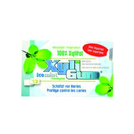 XyliGum Kaugummi Icemint 12 Dragees, Xylit Kaugummi kaufen. Ohne Zucker! Aspartamfrei. Xylit Zahnpflege Kaugummi online kaufen. XyliGum Kaugummi Icemint >