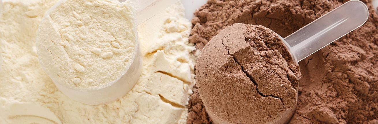 Eiweißpulver kaufen ✓ Eiweißpulver zum Abnehmen ✓ Muskelaufbau ✓ Eiweißpulver ohne Zucker ✓ Low Carb Proteinpulver online kaufen ✓ Eiweißpulver im Shop ➤