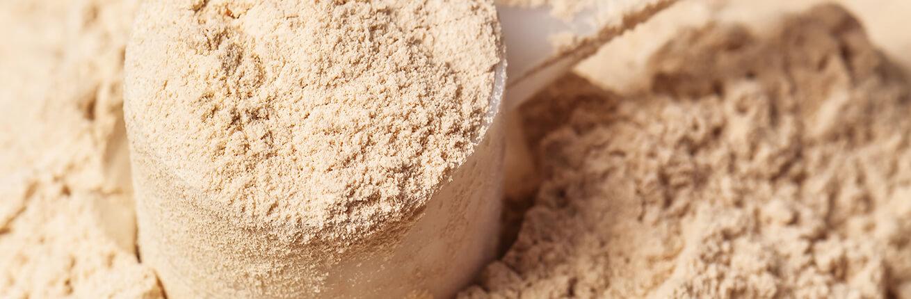 Whey Protein kaufen. Whey Protein ohne Zucker. Whey Protein online kaufen! Whey Protein (Molkeprotein), Protein für Muskelaufbau, Protein Abnehmen, Protein und Eiweiß zur Fettverbrennung kaufen