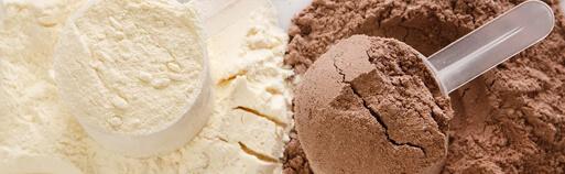 Zuckerfrei Online Shop, Eiweißpulver zuckerfrei kaufen, Eiweißpulver ohne Zucker kaufen. Eiweißpulver bestellen.